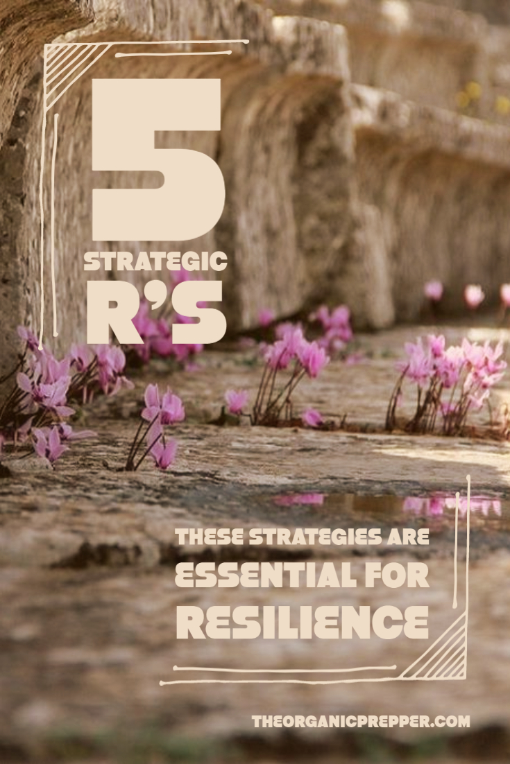 The 5 R\'s: These Strategies Are Essential for Resilience