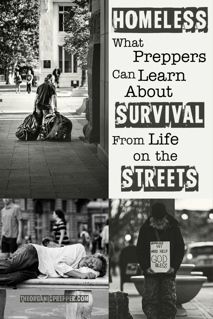 HOMELESS: What We Can Learn About Survival from Life on the Streets