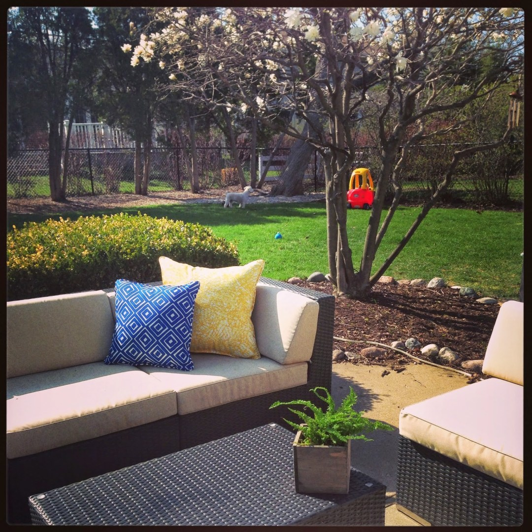 Organizing A Backyard Bash