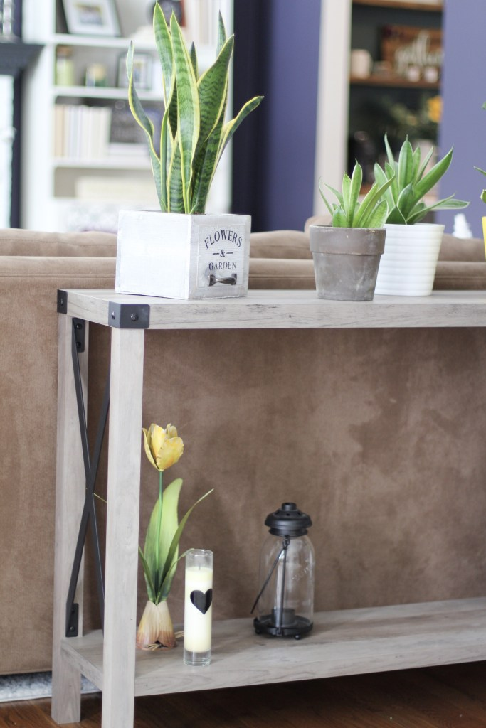 console table with plants and candles
