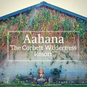 Aahana – The Corbett Wilderness Resort: Get More Out of Your Next Jim Corbett Trip Than Just Adventure!