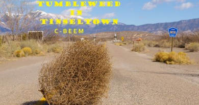 C-Beem Tumbleweed in Tinseltown cover