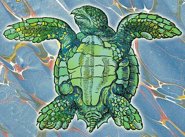 Spurious Transients Mock Turtle cover