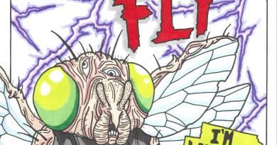 calm feeling fly artwork