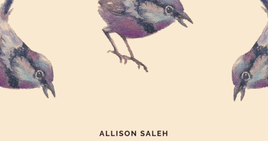 Allison Saleh Still I Rise cover