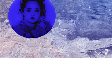 Dead Bird Lady February single cover