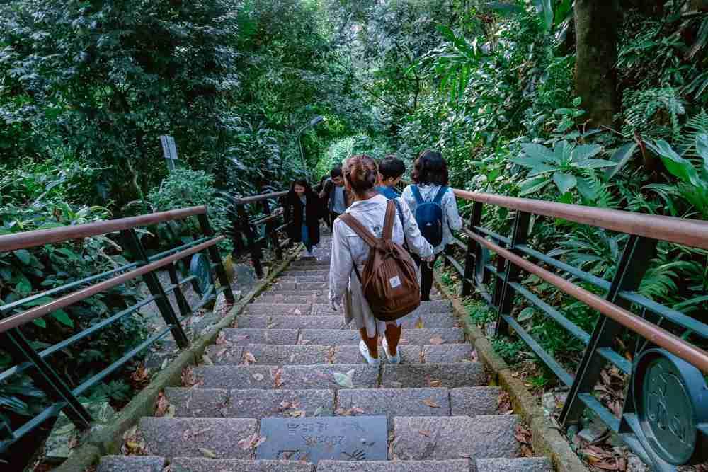 elephant mountain trail steps in taipei taiwan