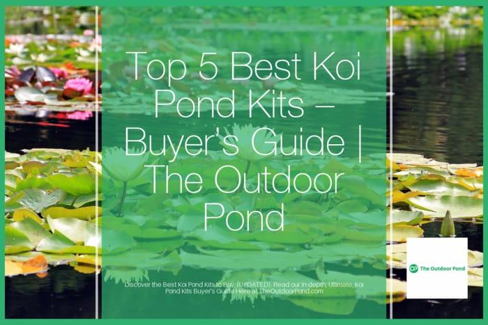 Top 5 Best Koi Pond Kits