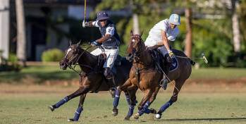 Take part in organised polo games