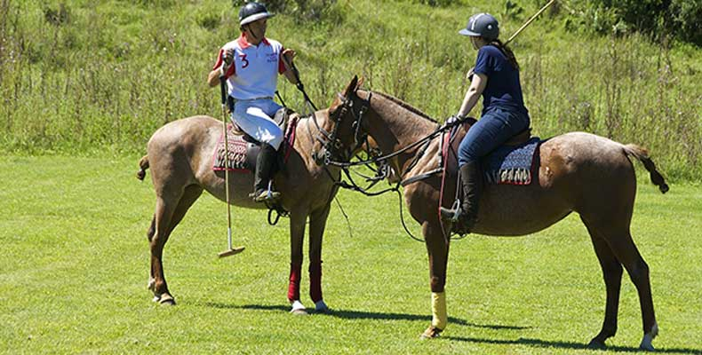 Polo coaching from a professional