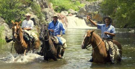 The horses love the water as much as us
