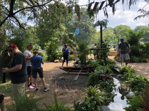 Pokemon Go Fest Rainforest Habitat
