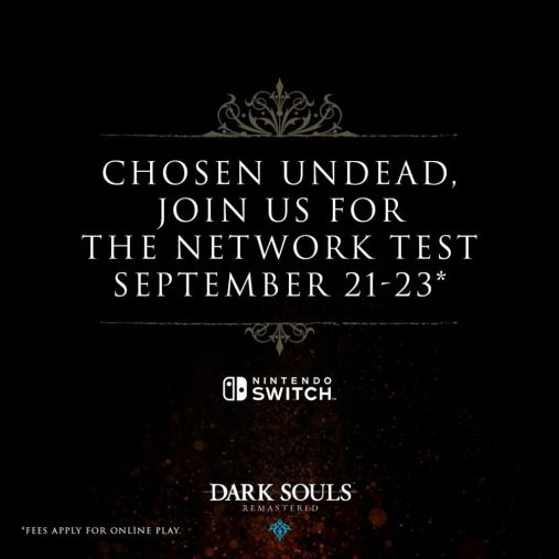 dark souls switch remastered network test