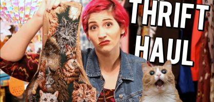 November Monthly Thrift Haul Video