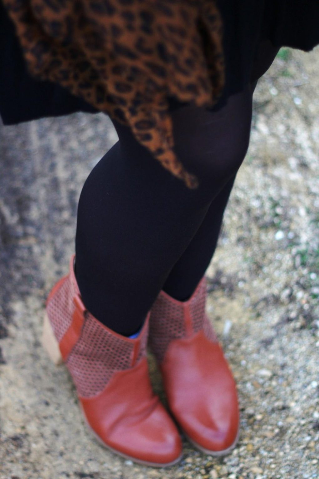 Outfit details: leopard print scarf, black skater skirt, black tights, cognac colored boots