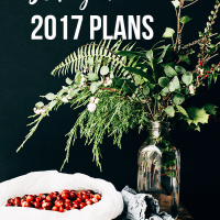 Looking Ahead: Plans & Goals for 2017 - The Outside & In