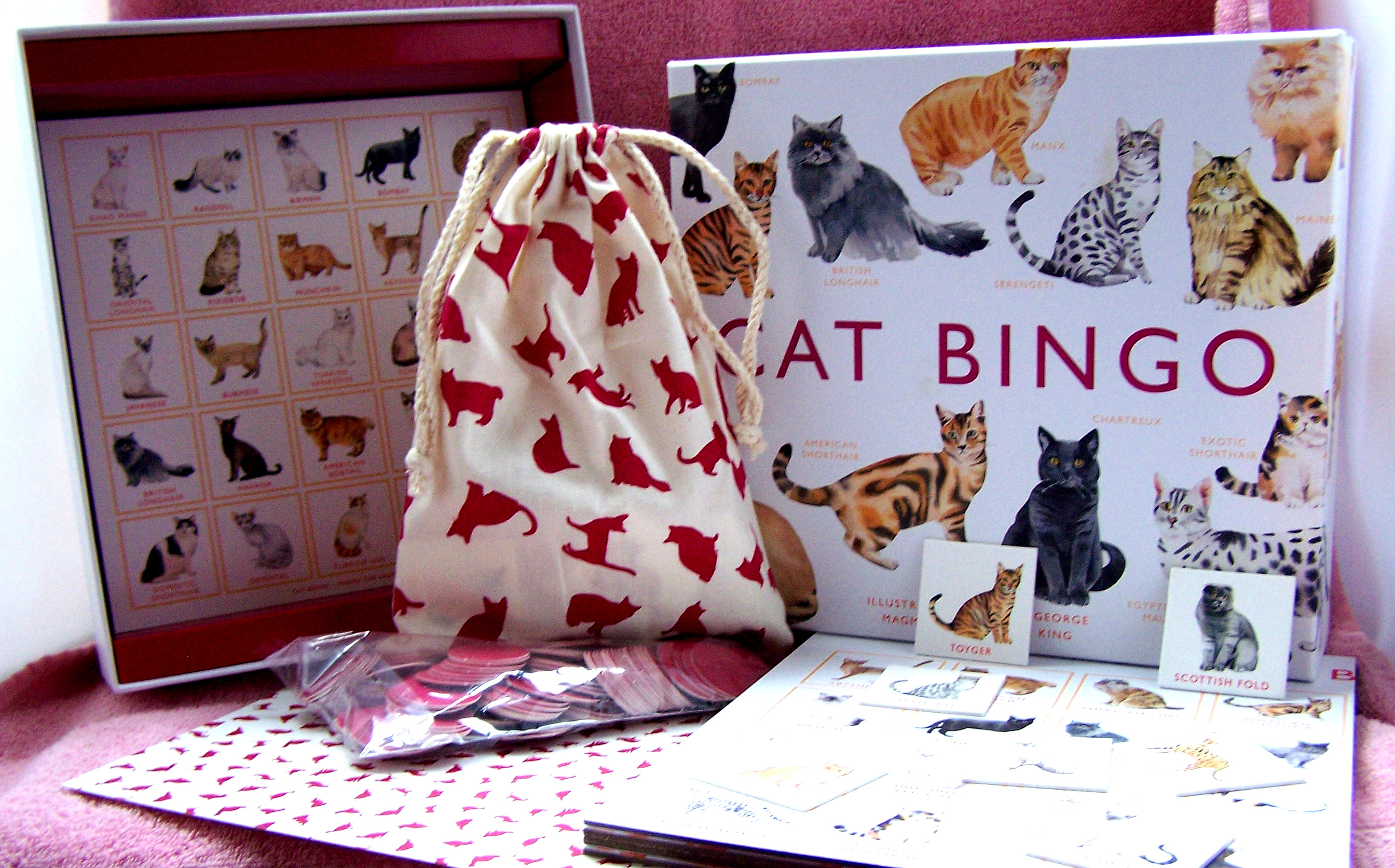 Cat Bingo: Holiday Gift Guide Giveaway! Ends 12/21