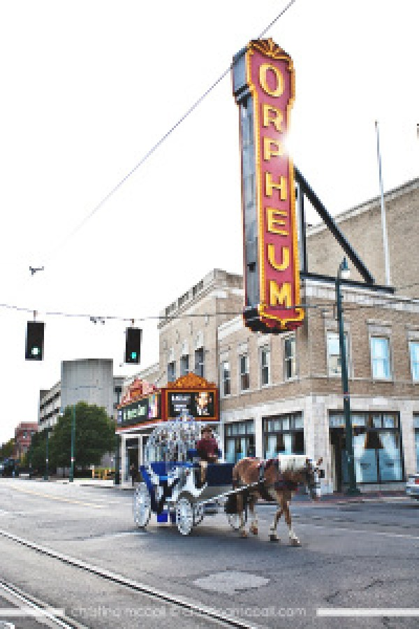 Horse Drawn Carriage by the Orpheum in Memphis by Christina McCall