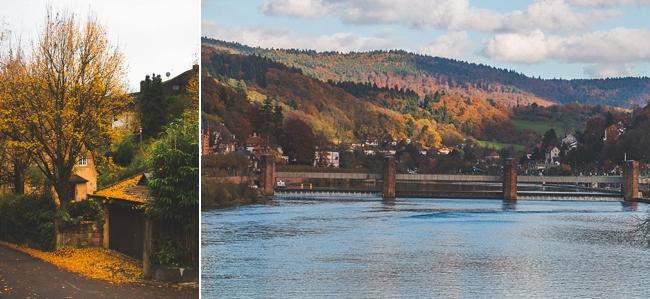 Autumn_Germany-38_Germany.jpg