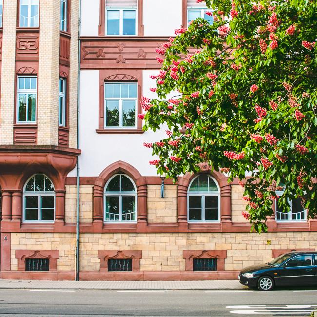 Heidelberg Germany-13