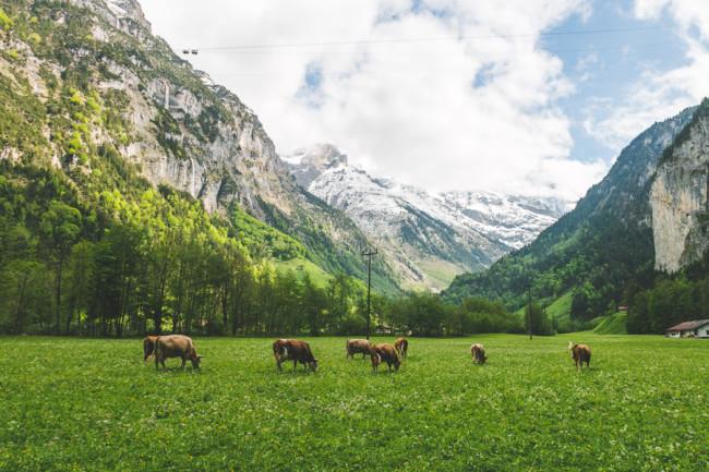 Lauterbrunnen, Switzerland - The Overseas Escape-23