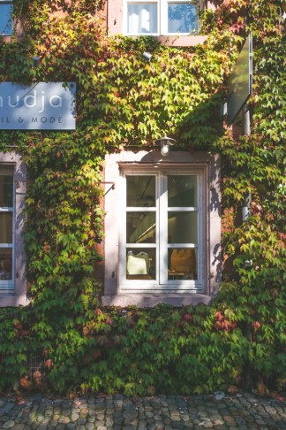 Freiburg, Germany - The Overseas Escape-38
