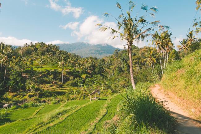 New Bali Tours - The Overseas Escape-17