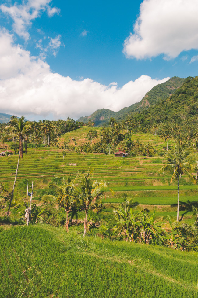 New Bali Tours - The Overseas Escape-29
