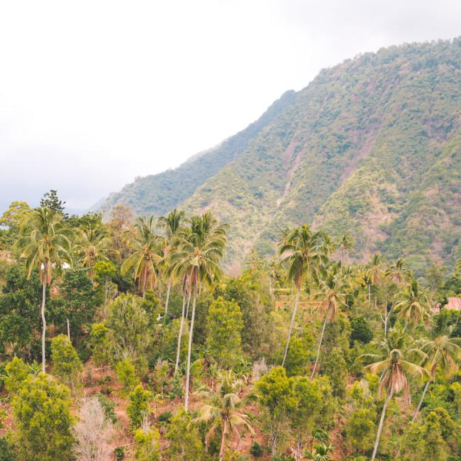 New Bali Tours - The Overseas Escape-47