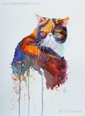 Pumpkin an exotic cat in watercolour