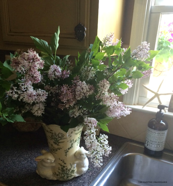 lilacs-in-kitchen-iphone