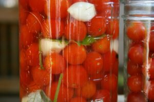 fermented tomatoes