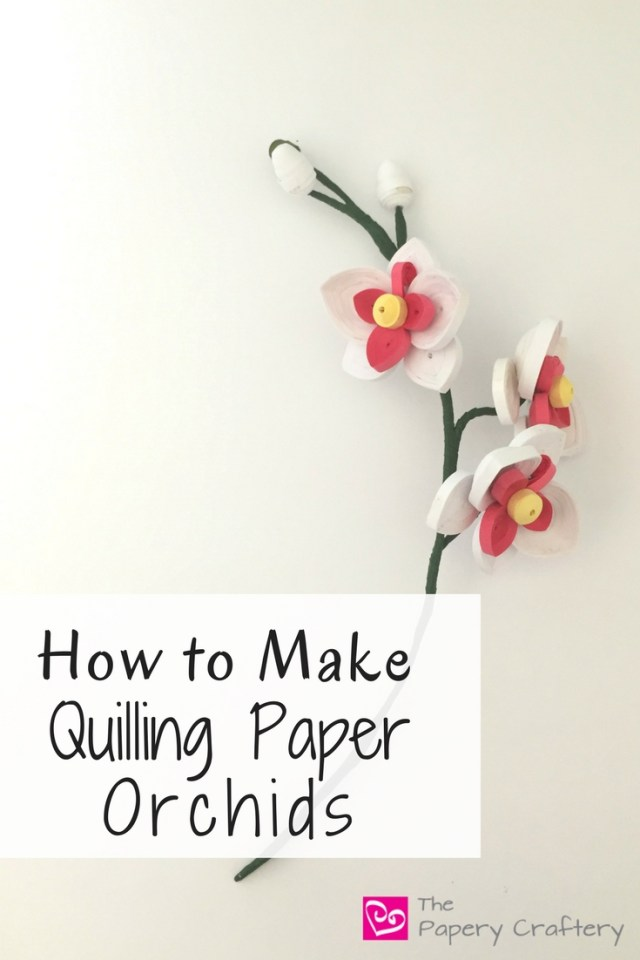 How to Make Quilling Paper Orchids - Simple blooms for a tropical mood -- www.thepaperycraftery.com