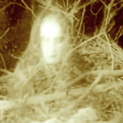 Photo of a Ghostly image
