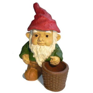 Popular image of the Gnome