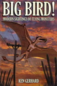 Big Bird - Modern Sightings of Flying Monsters,