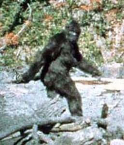 Patterson-Gimlin bigfoot film capture