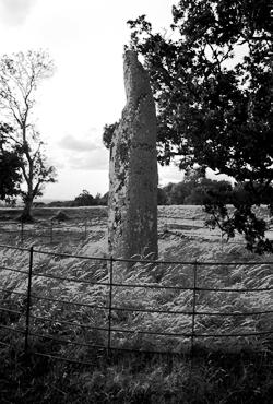 Longstone Rath in County Kildare, Ireland