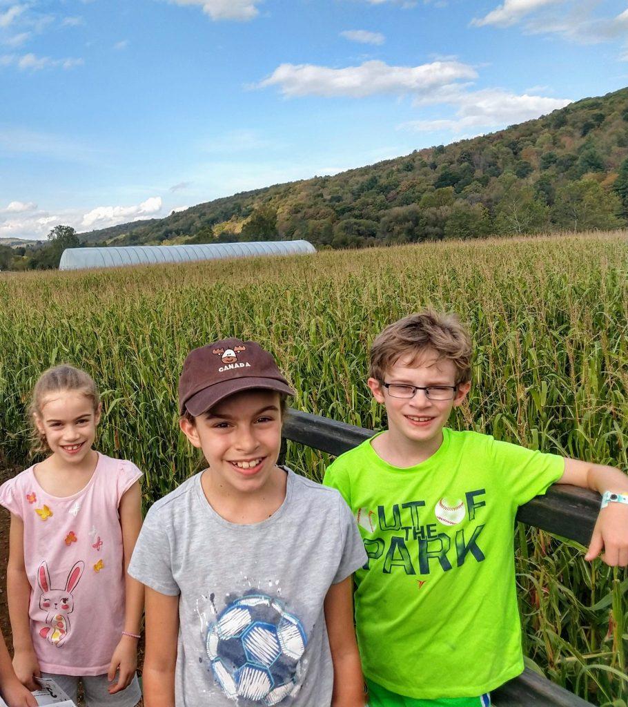 corn maze bridge