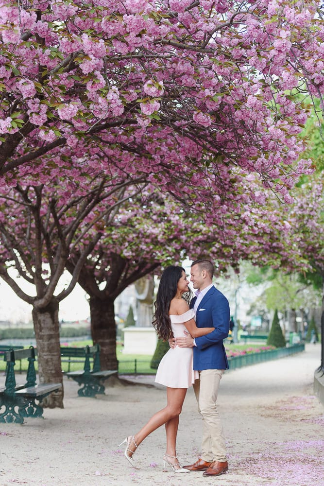 photographs of couples under the cherry blossoms by the Notre Dame cathedral
