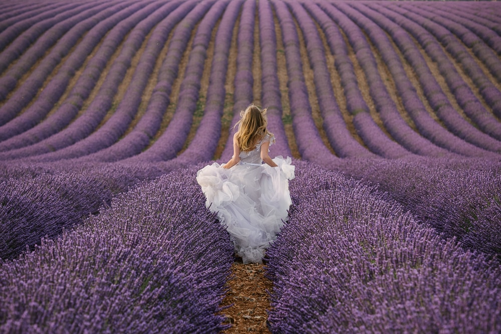 Bride running in the lavender fields in provence