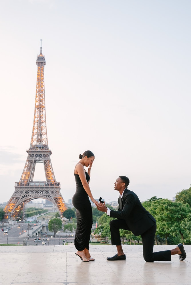 Paris proposal 2020 by the Eiffel Tower lights up