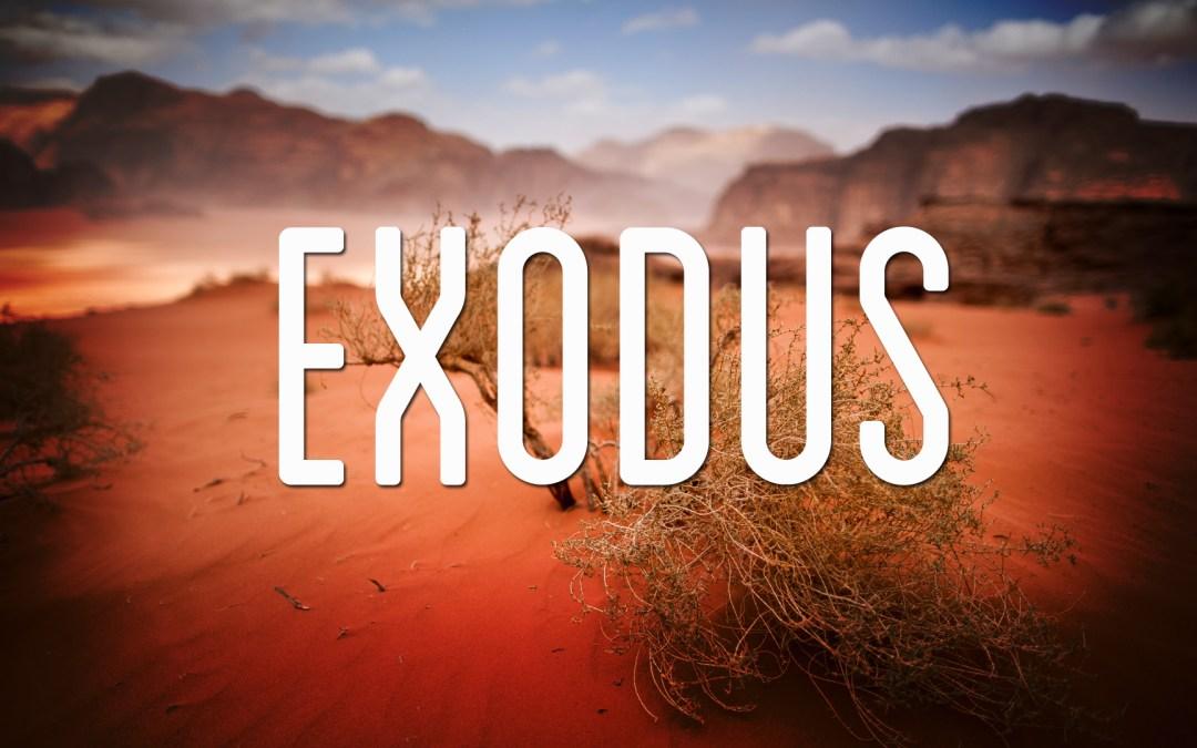 Exodus 36-40