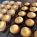 Buttercake Cupcakes