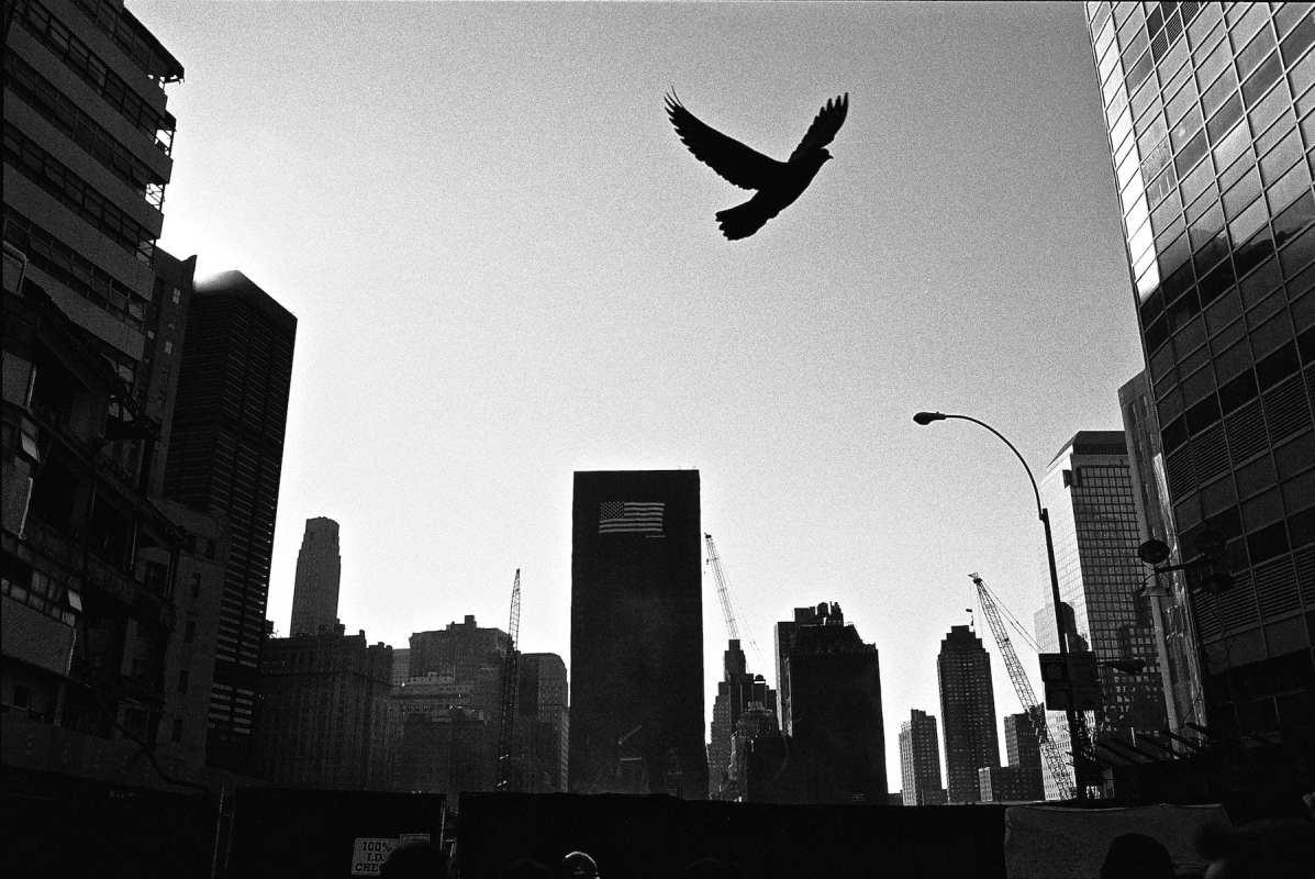 2002 Empty Sky 64