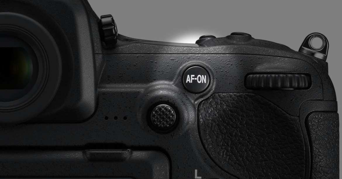 The Evolution of Back-Button Autofocus: The D500 (and D5)