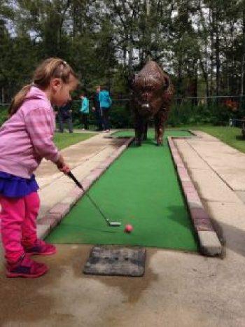 Golf Cypress