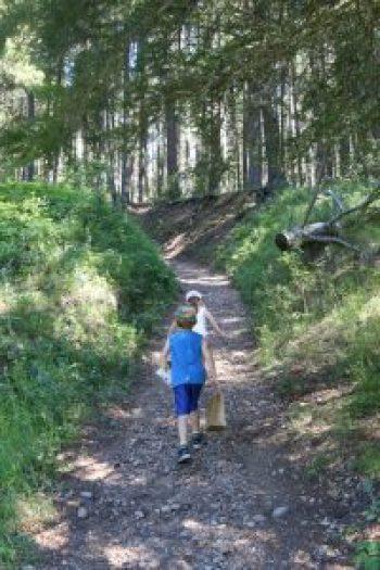 Hiking Cypres