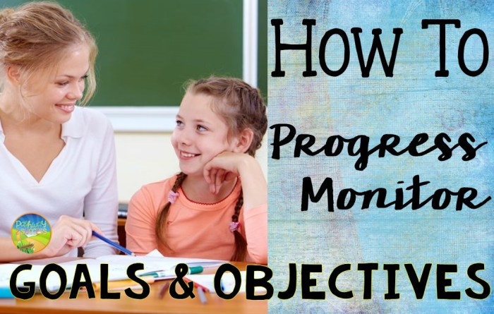How to Progress Monitor Goals and Objectives Web
