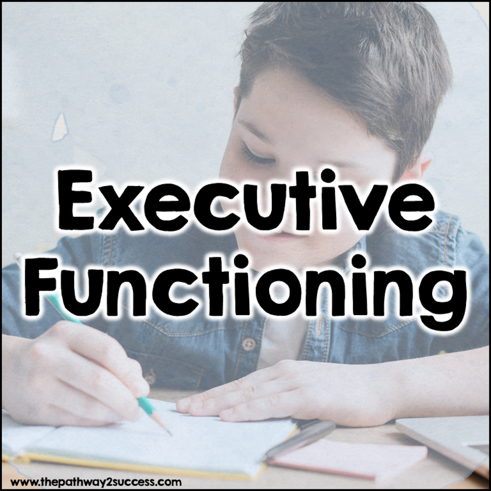Executive functioning skills: Information for parents.